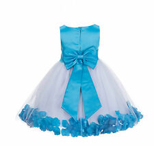 Wedding Pageant Rose Petal Flower Girl Dress Toddler Holiday Junior Gown 167T11