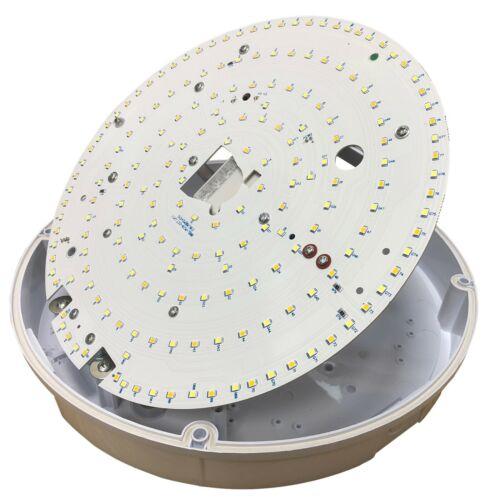 LED 2D Bulkhead Emergency Version 12W IP65 CCT Switchable Ceiling Light Chrome