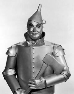 Tinman Tin Man Wizard of Oz 8 x 10 Photo Picture #b1   eBay