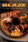 Blaze: The Beginning by Reneiloe Mabena (Paperback / softback, 2013)