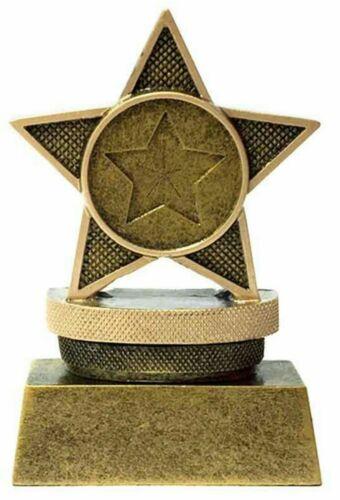 "ENGRAVED FREE Personalised Mini Star /""Star/"" Award Trophy gw"