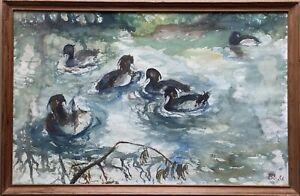 Floating-Ducks-1956-Watercolour-monogrammiert-40-5-x-60-5-cm-Animals-Birds