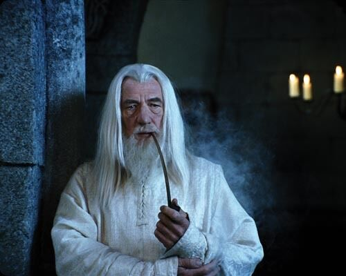 McKellen, Ian [Lord of the Rings] (1028) 8x10 Photo
