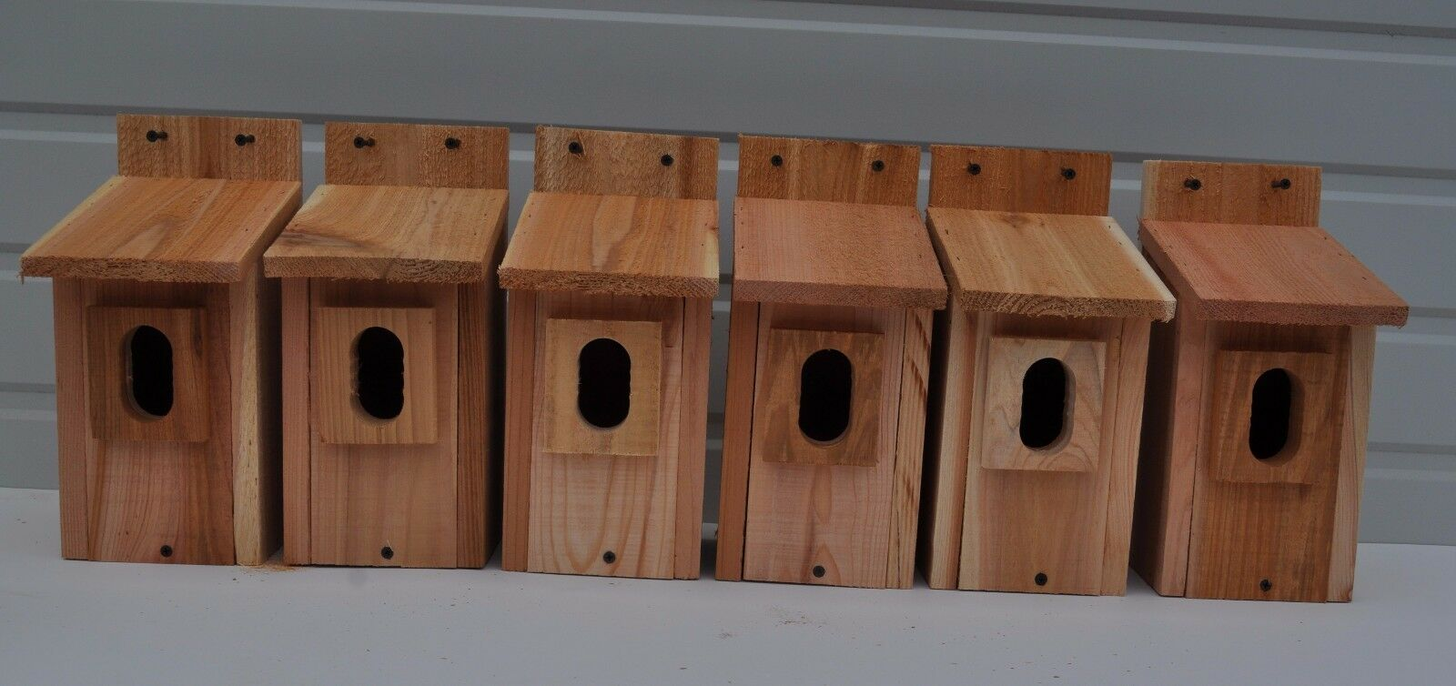 6 azulbird casas del pájaro Nido De Caja Cedro Peterson Oval apertura libre shippimg