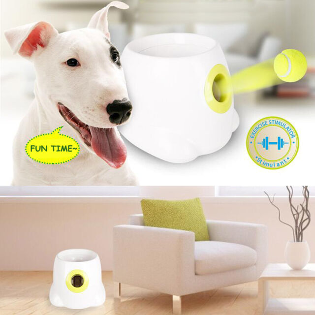 all for paws hyper fetch machine dog pet afp ball play interactive