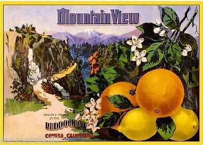 Covina Los Angeles County Mountain View Lemon Citrus Fruit Crate Label Art Print