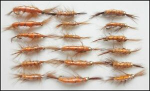 Fishing Flies Goldhead /& Unweighted Cruncher trout flies 18 Pack Size Choice