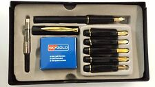 SHIP FROM USA - Fast Delivery New SkyGold Calligraphy Fountain Pen 6 Nib