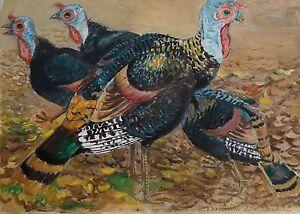 Karl-Adser-1912-1995-Wildputen-Indian-Chickens-Boy-Turkey-Birds-Zoo