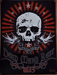 Placa-Metal-Decorado-Alchemy-Skull-Gotica-Dead-Mans-Rest-40-X-30CM