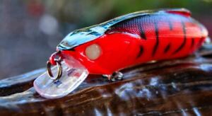 Bass Lure Redfin Jacks Flathead Tailor Bream Salmon Cod Yellowbelly Perch Trout