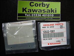 KAWASAKI-KX125-98-00-REEDS-REED-PETALS-VALVES-GENUINE
