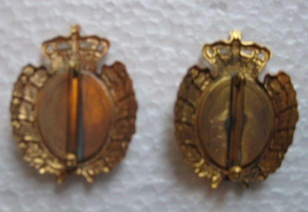 Emblemer, 2 Politi kasket mærker til skråhue