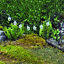 Fiddlehead-Miniature-Fairy-Garden-Lights-Lamps-amp-Lanterns-Quick-FOC-Delivery thumbnail 6