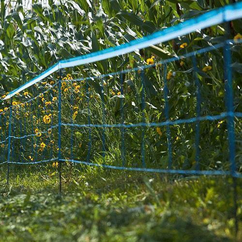 Rete Per Cinghiali Elettrificabile 'Wildnet'  Lunghezza 50 Mt
