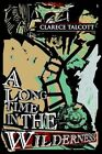 Long Time in The Wilderness 9780595310432 by Clarece Talcott Paperback