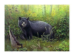 13-034-Morning-Stroll-034-Black-Bear-28x20-Canvas-Print-by-Robert-Metropulos