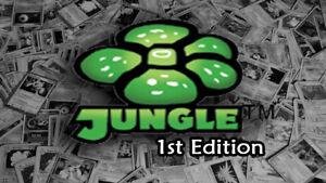 Jungle-1st-edition-Common-Uncommon-Rare-Single-Pokemon-Cards-Dutch-IP