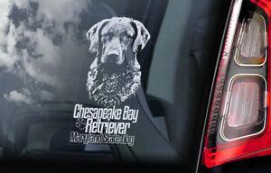 Chesapeake-Bay-Retriever-Auto-Finestrino-Adesivo-Maryland-Stato-Cane-CBR-V02