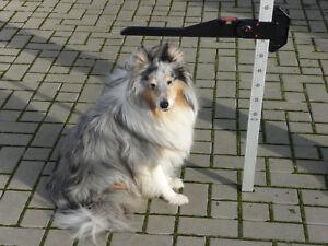 Messlatte-NEU-fuer-Ponys-Hunde-Schaafe-Ziegen-Aluminium-mit-Wasserwaage