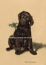 Chocolate Labrador puppy dog Christmas cards pack of 10.