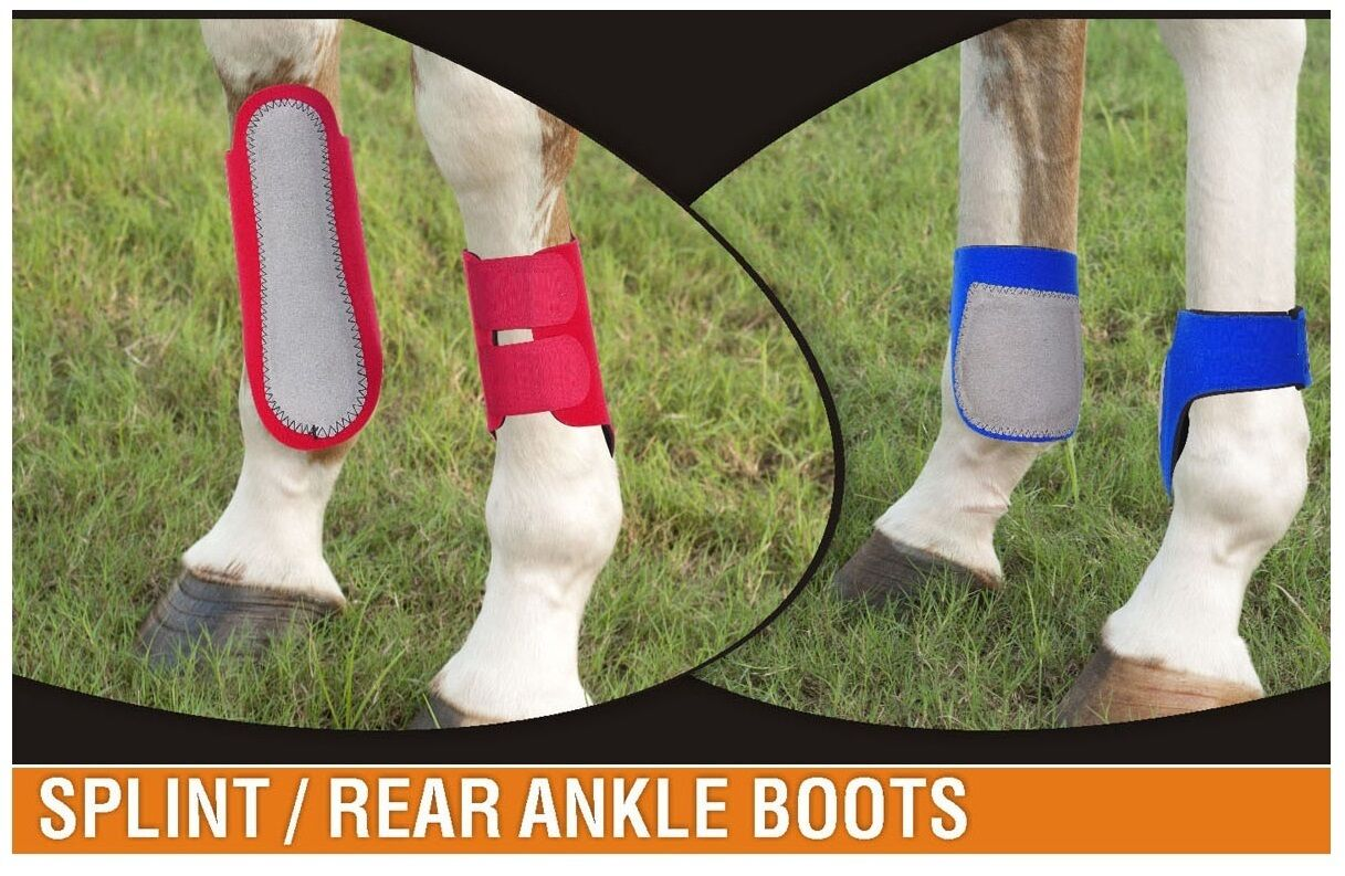 Horse Boots Set - Set of 4 (2 x Splint , 2 x Rear)