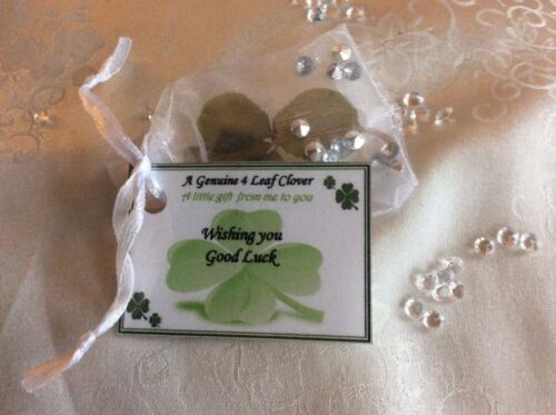 Lucky genuine 4 four leaf clover gift good luck on in your Retirement gift  card
