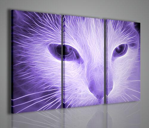 QUADRO MODERNO SURREAL CAT QUADRI MODERNI SU TELA ANIMALI GATTI GATTO