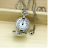 women-Alice-in-Wonderland-flamingo-necklace-pendant-pocket-watch-silver-tone thumbnail 3