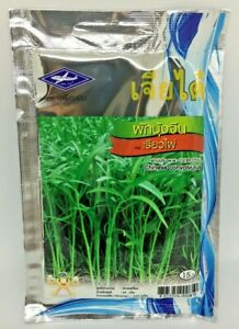 Water-Kang-Spinach-Vegetable-Plant-Leaf-Green-Organically-Grown-Garden-420-Seeds
