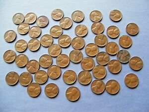 Roll Of 1956 Lincoln Wheats Circulated