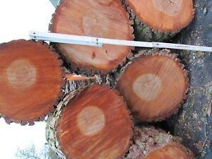 Glas-Herdabdeckplatte Ceranfeldabdeckung Spritzschutz 80x52 Lavendelfeld