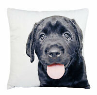 Black Labrador Cushion Ashdene Throw Pillow Velvet 12.5 Square Puppy Lab Dog