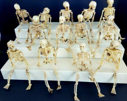 "HALLOWEEN LOT OF 13  SKELETONS 6/"" dollhouse miniature"