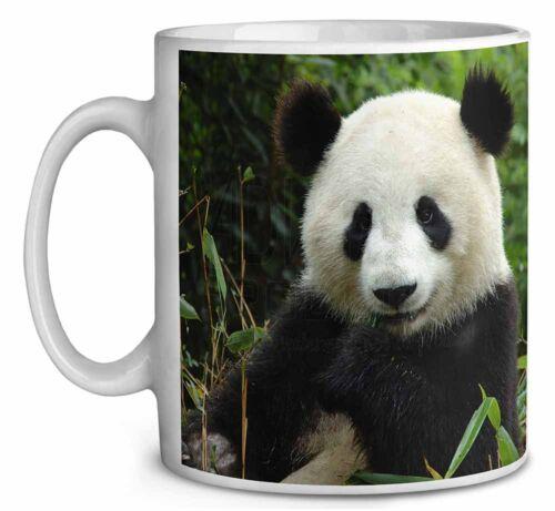 Beautiful Panda Bear Coffee//Tea Mug Christmas Stocking Filler Gift Idea ABP-1MG