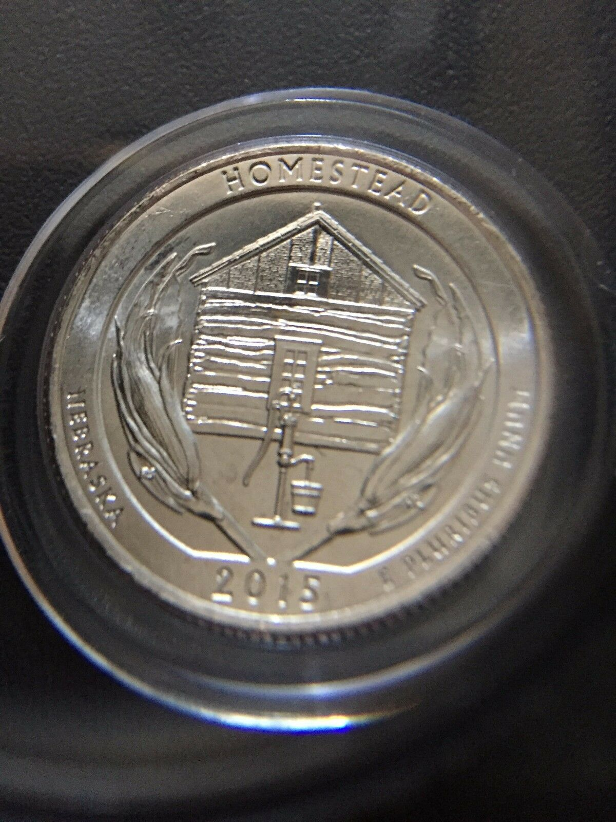 2015 P Homestead Nebraska Quarter Coin Error WDDR-004 Best of Variety in Capsule