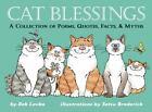 Cat Blessings by Bob Lovka (2002, Paperback)