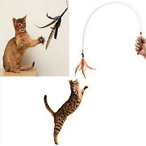 FD1126 Crazy Interactive Kitten Cat Pet Toy Wand Teaser Feather Bell Bead ~1PC~