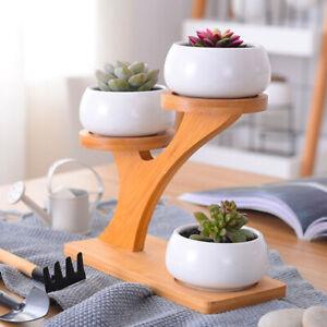 KE-Succulent-Plant-Pot-Holder-Ceramic-Owl-Bamboo-Stand-Shelf-Planter-Garden
