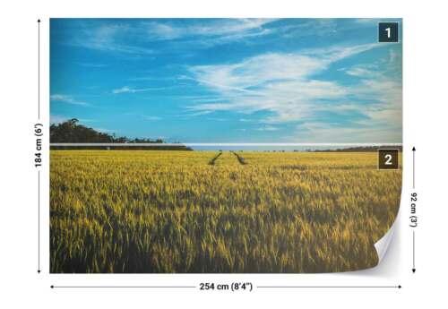 Tapete Gold Feld Himmel Landschaft Vlies Fototapete FW-1072