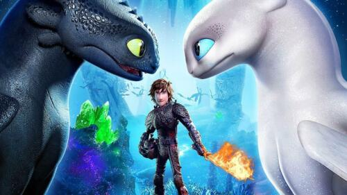 How to train your Dragon#9 T shirt Transfer,bibs,bags and Cushions