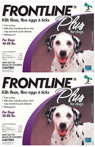 Frontline Dogs Large X