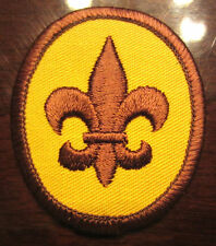 Fleur Di Lis Oval Boy Scout Patch Bsa