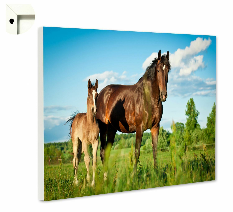 Magnettafel Pinnwand Memoboard Motiv Pferde Stute & Fohlen