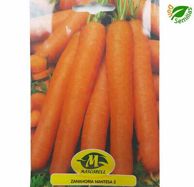1 gr // 1.000 semillas Zanahoria Redonda de Paris carrot seeds