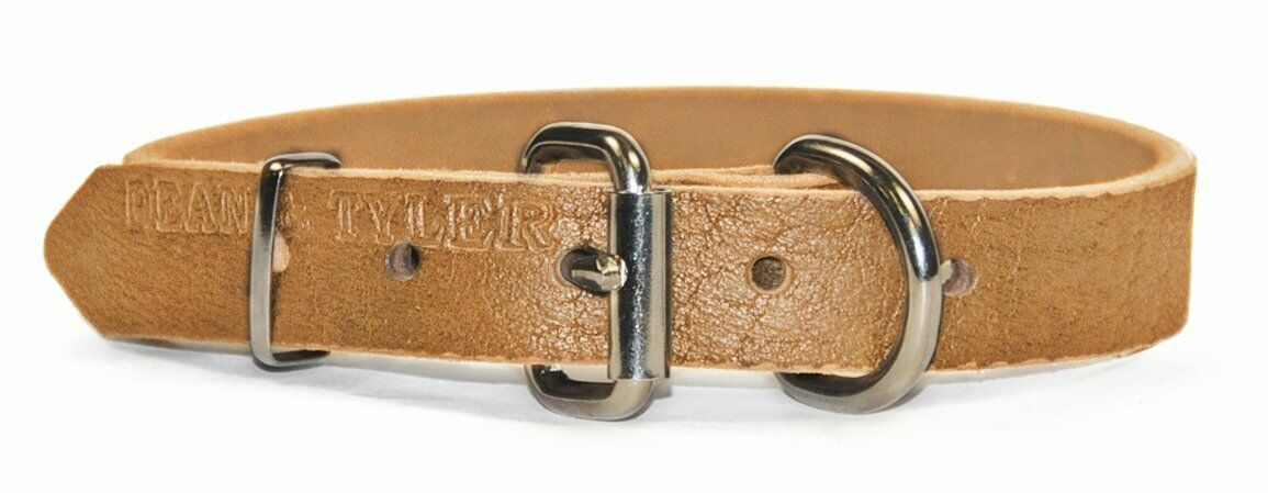 miglior reputazione Dean and Tyler    B and B  Basic Leather Dog Collar Dimensione 34 x 1 , Fits Neck 32-36   design semplice e generoso