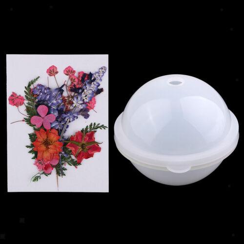 echte getrocknete Blume für DIY Ornament Silikon 100mm Kugel Kugelform