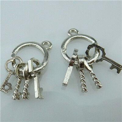13711 30PCS Dull Silver Alloy Mini Keychain Key Ring Charms Jewelry Making
