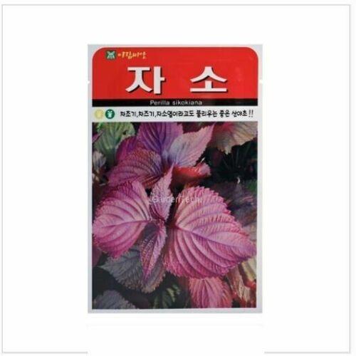 Perilla Sikokiana 1000pcs Garden Home Plant Vegitable Seeds/_IU