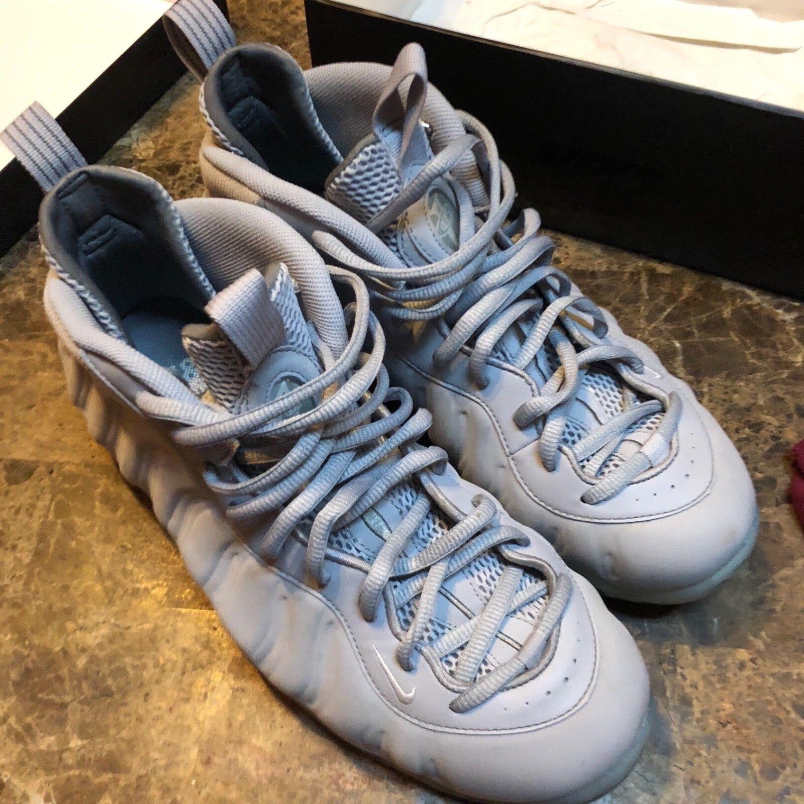 Nike Air Foamposite One Wolf Grey